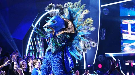 Donny Osmond Is The Peacock On 'The Masked Singer