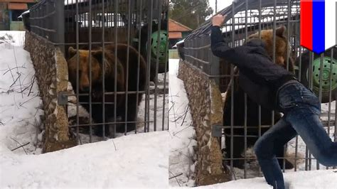 Bear attack video: idiot puts his arm in cage and bear