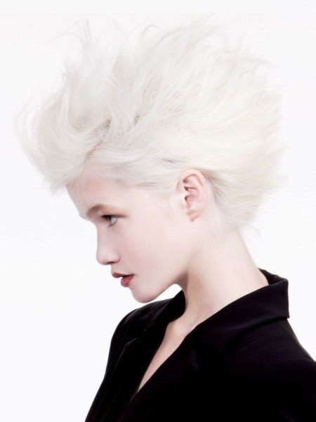Modern French hairstyles and haircuts for the festive season