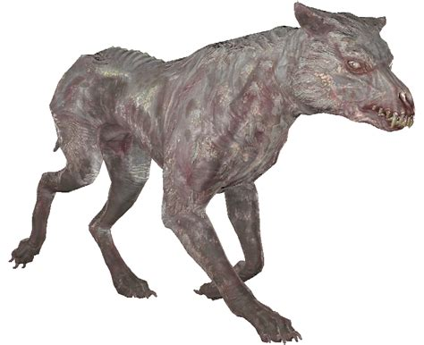 Albino mongrel - The Vault Fallout Wiki - Everything you