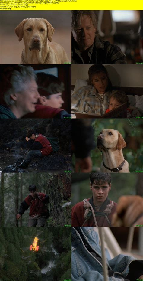 Download Far From Home The Adventures of Yellow Dog 1995