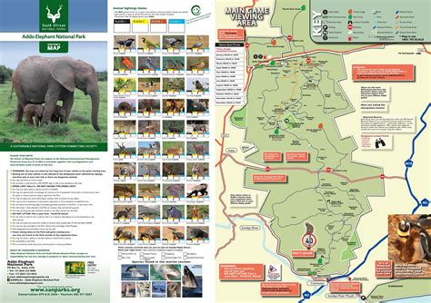 Addo Elephant National Park - information about the Park
