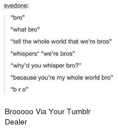 Svedone Bro What Bro Tell the Whole World That We're Bros